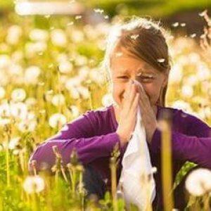 Чем лечить аллергический насморк?