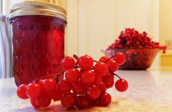 ягоды калины при закапывании носа при полипах
