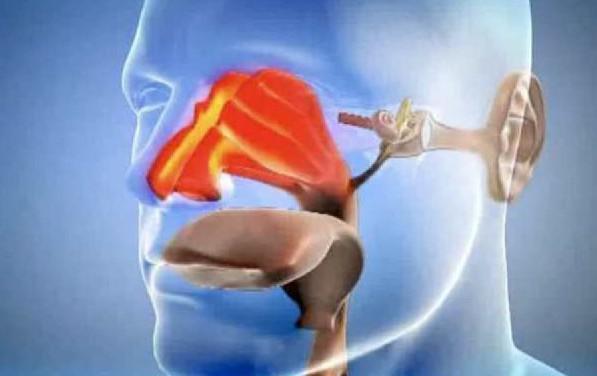 Аллергические поражения горла