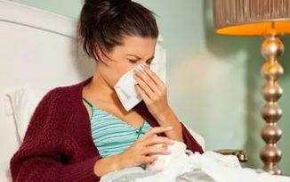 калина при простуде во время беременности