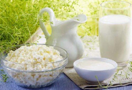 Польза жирных молочных продуктов: мифы и факты