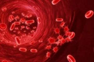 Низкий гемоглобин причины и последствия