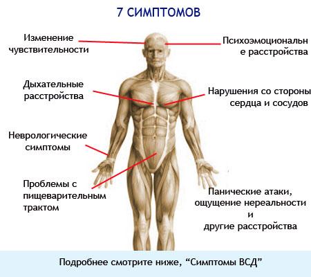 Симптомы ВСД у взрослых на картинке