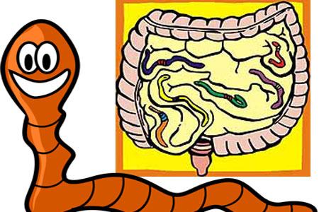 Симптомы паразитов в организме человека