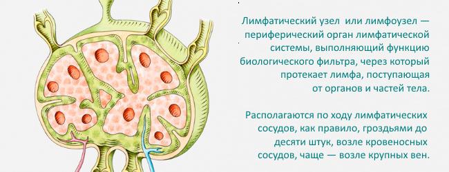Uvelichenie limfaticheskih uzlov