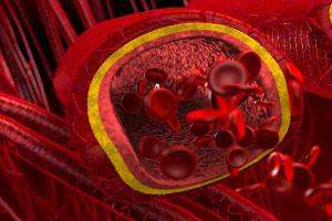 Железонорма в крови