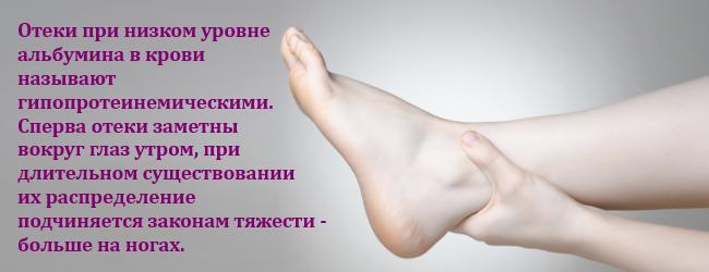 albumin-v-krovi