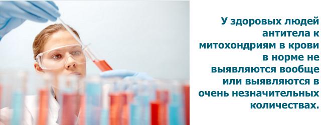 ama-antimitoxondrialnye-antitela