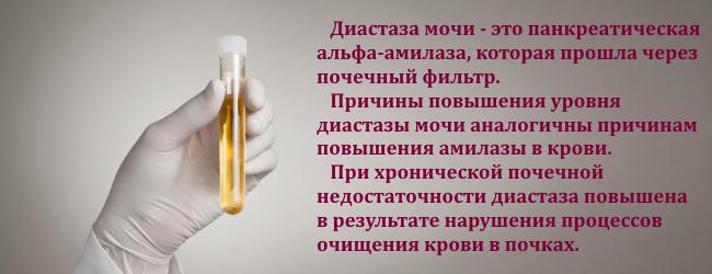amilaza-v-krovi-i-moche