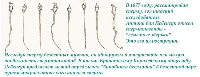 analizy-spermy-i-spermogramma