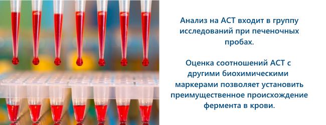 ast-aspartataminotransferaza