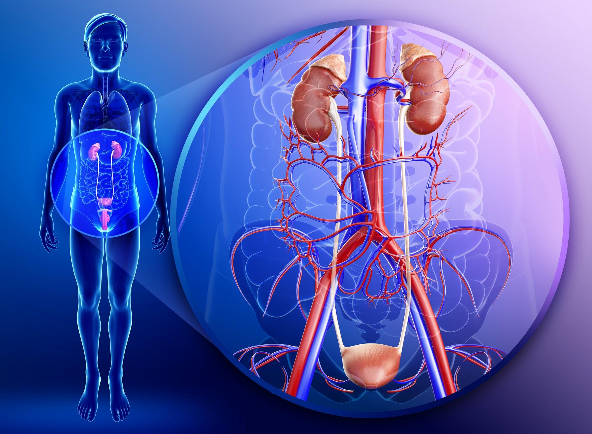 Хвороби статевих органів у чоловіків