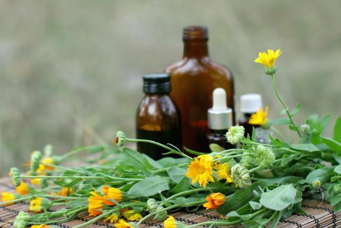 Всі рецепти лікування раку простати народними засобами