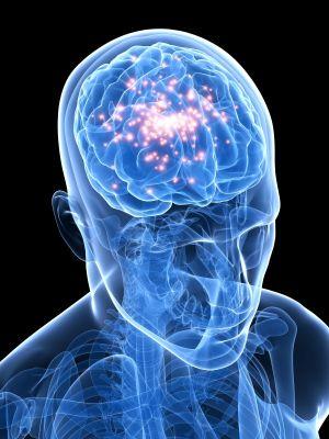 активность в мозгу