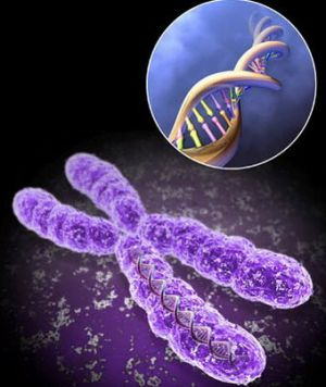 нурашение в геноме