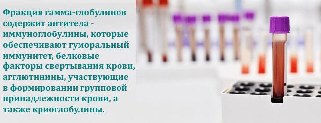 globuliny-krovi