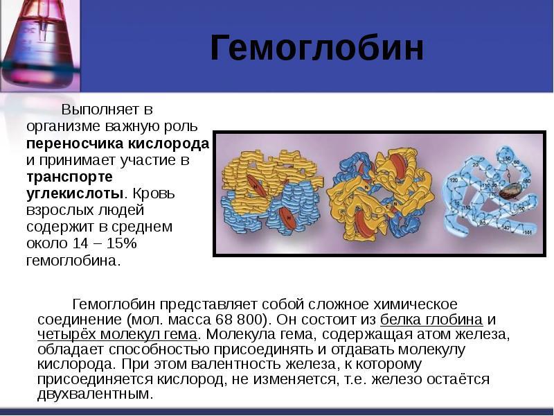Гемоглобін в крові у чоловіків: норма і відхилення