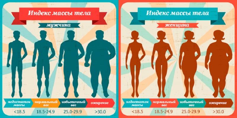 Індекс маси тіла: таблиця і розрахунки