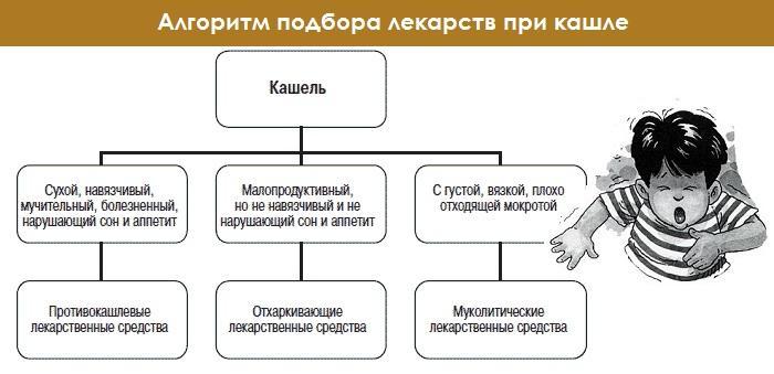 Алгоритм выбора лекарственных средств при кашле у детей