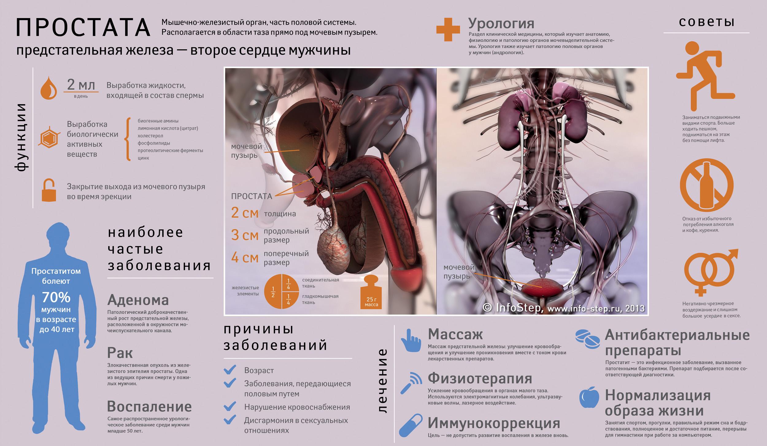 Хвороби передміхурової залози і їх симптоми
