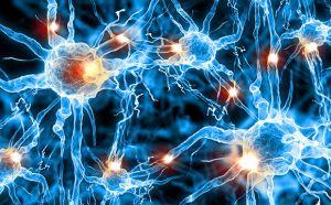 нейронная активность
