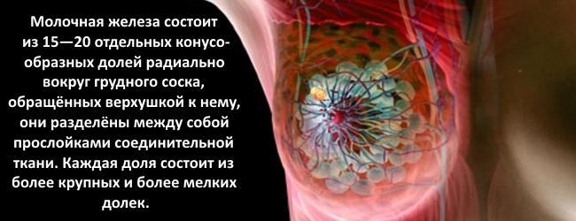 onkomarker-molochnoj-zhelezy-ca15-3