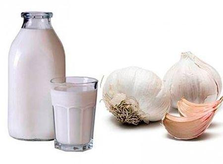Молоко с чесноком для лечения бронхита