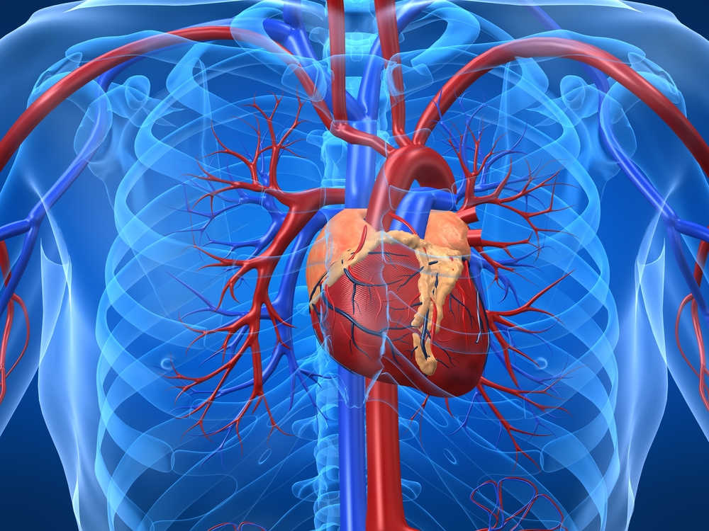 Підвищений гемоглобін: причини і симптоми