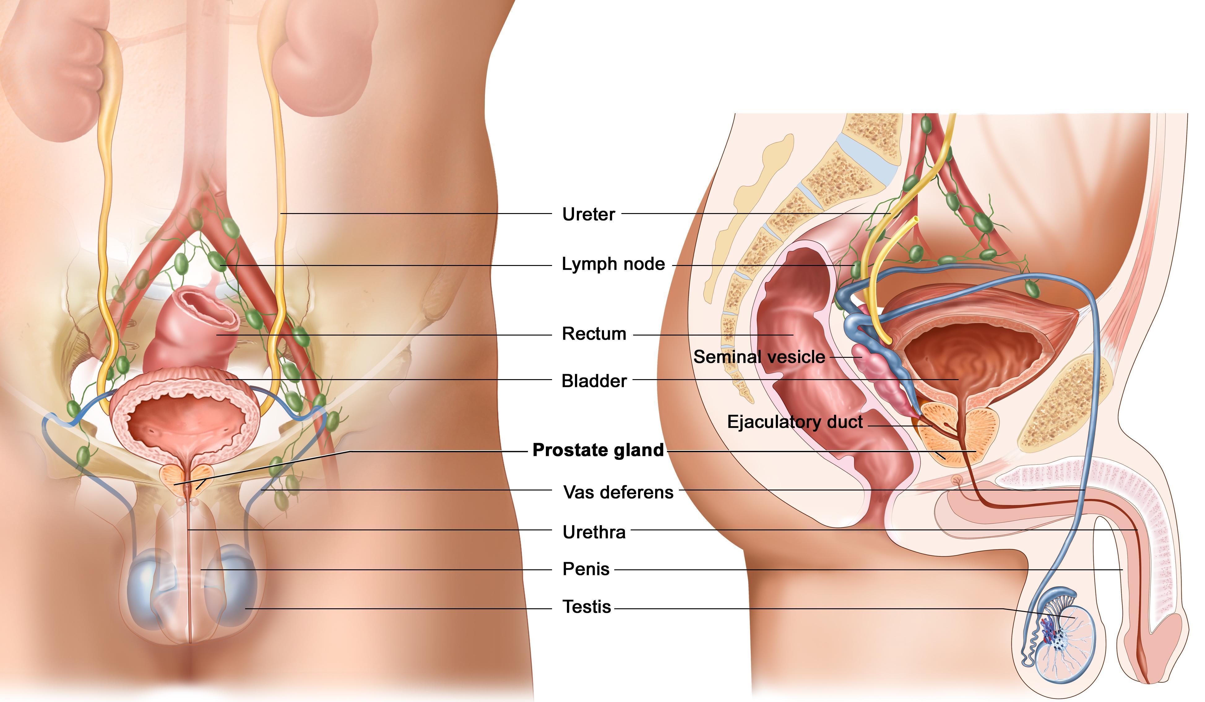 Печіння після сечовипускання у чоловіків: можливі причини
