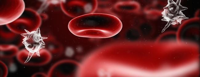 rasshifrovka-urovnja-prokalcitonina-v-krovi
