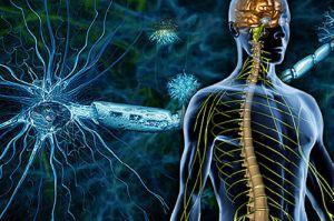 Разрушение миелиновой оболочки нервов