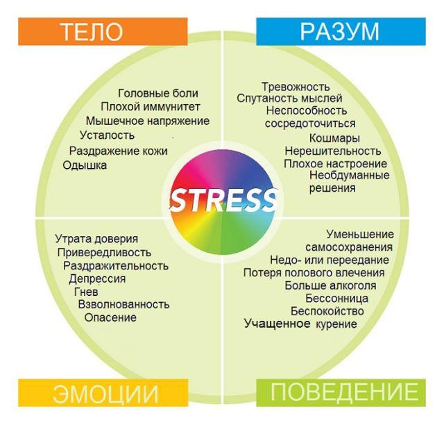 Действие стресса на организм