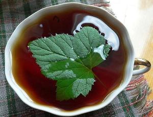 Удалить токсины из организма поможет чай с листьями смородины