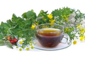 травяные чаи для почек