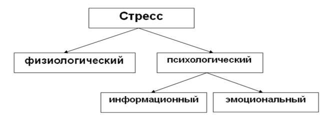 разновидности опухолей спинного мозга